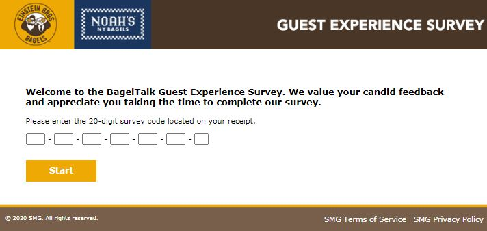 Baggle Expereince Survey
