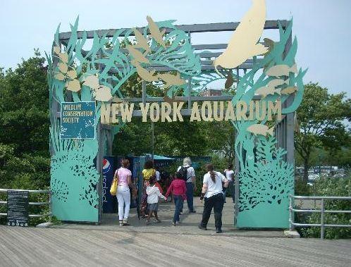 New York Zoo & Aquerium Survey