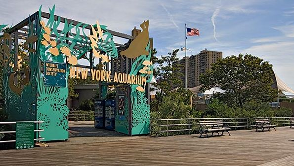 New York Zoo & Aquerium Survey